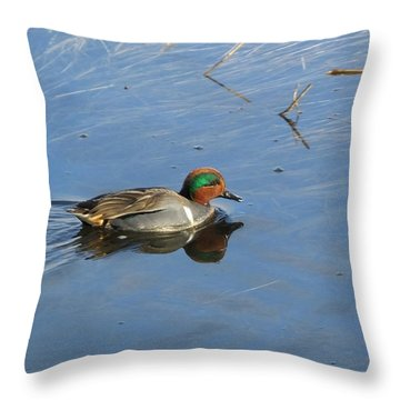 Teal Throw Pillow by Mark Alan Perry