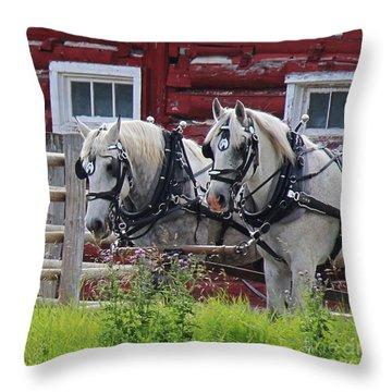 Team Of Greys Throw Pillow
