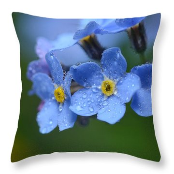 Tearful Goodbye Throw Pillow