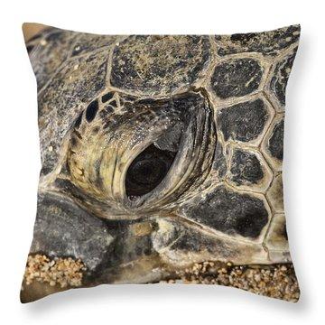 Teary-eyed Throw Pillow by Douglas Barnard