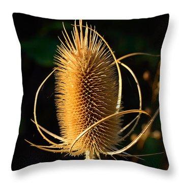 Teasel  Throw Pillow