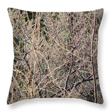 Throw Pillow featuring the photograph Technicolour Frost by Brian Boyle