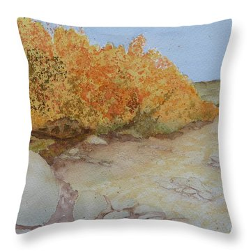 Tejas Creek Experiment - 7 Throw Pillow