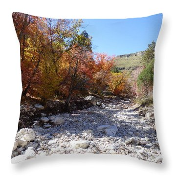 Tejas Trail In Fall Throw Pillow