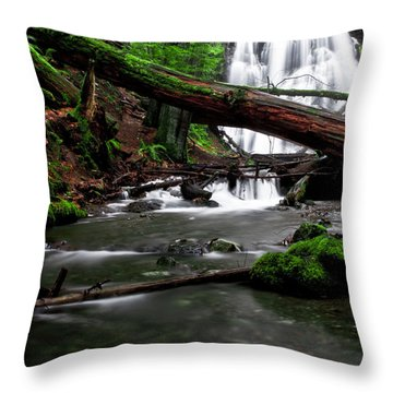 Temperate Old Growth Throw Pillow