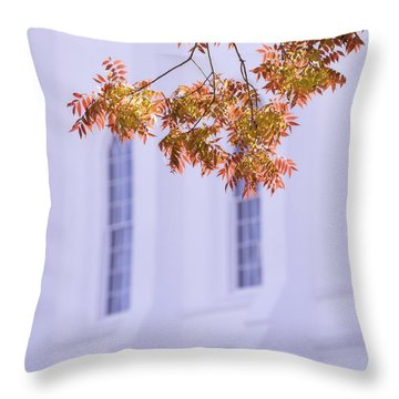 Temple Accent Throw Pillow
