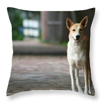 Temple Dog Throw Pillow by Nola Lee Kelsey