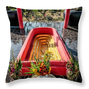 Temple Feature  Throw Pillow by Adrian Evans