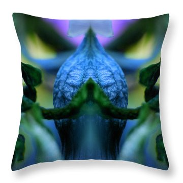 Throw Pillow featuring the photograph Temple by WB Johnston