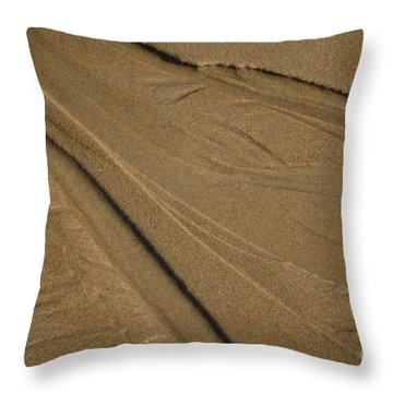 Throw Pillow featuring the photograph Temporay Illusions by Christiane Hellner-OBrien