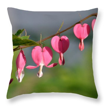 Tender Hearted Throw Pillow