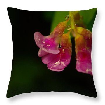 Tender Throw Pillow by Jeff Swan