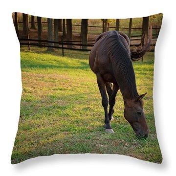 Tender Spring Grass Throw Pillow