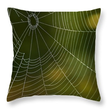 Tender Web Throw Pillow by Christina Rollo