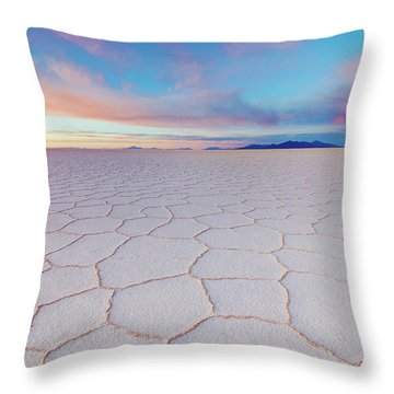 Salt Throw Pillows