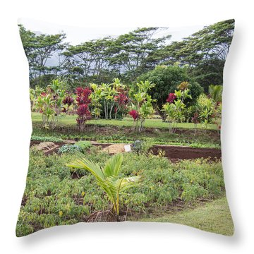 Throw Pillow featuring the photograph Tending The Land by Suzanne Luft