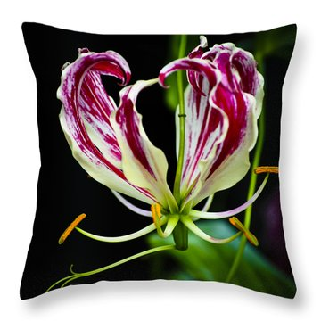 Tendrils Of My Mind Throw Pillow by Christi Kraft