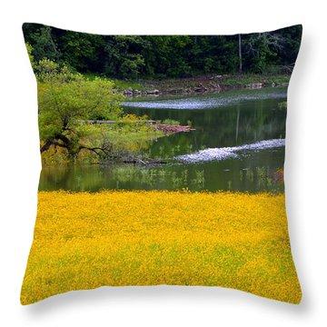Tennessee Black-eyed Susan Field Throw Pillow