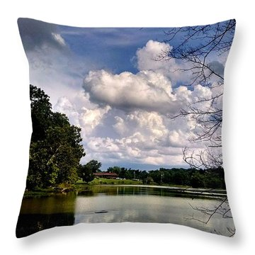 Throw Pillow featuring the photograph Tennessee Dreams by Chris Tarpening
