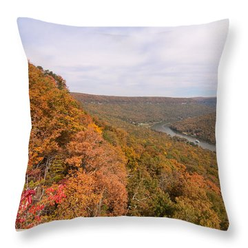 Throw Pillow featuring the photograph Tennessee Riverboat Fall by Paul Rebmann