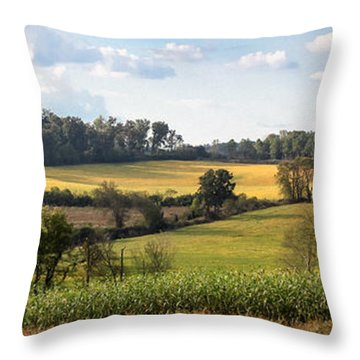 Throw Pillow featuring the photograph Tennessee Valley by Todd Blanchard