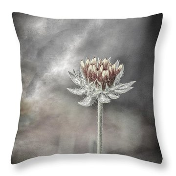 Throw Pillow featuring the photograph Tension And Balance by Mitch Shindelbower