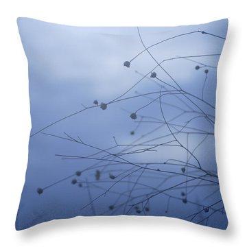 Tentaculos Del Cielo Throw Pillow by Guido Montanes Castillo