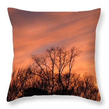 Throw Pillow featuring the photograph Tequila Sunset by Bill Swartwout