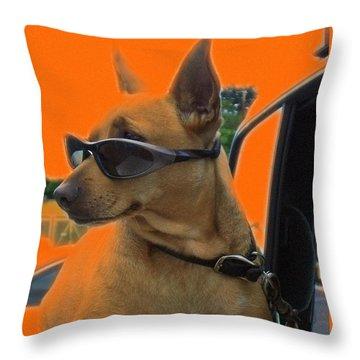 Terminally Cool Watch Dog Throw Pillow by Barbie Corbett-Newmin