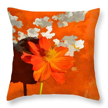 Terra Cotta Shadows Throw Pillow