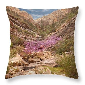 Terrace Canyon Throw Pillow by Alan Socolik