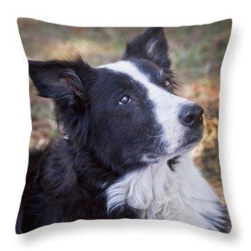 Tessie 2 Throw Pillow by Rich Franco