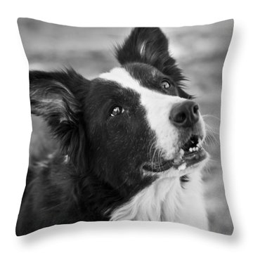 Tessie 9 Throw Pillow by Rich Franco