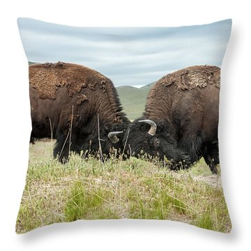 Throw Pillow featuring the photograph Test Of Strength by Jack Bell