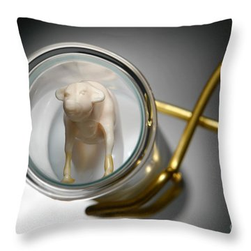Test Tube Calf Throw Pillow by Olivier Le Queinec