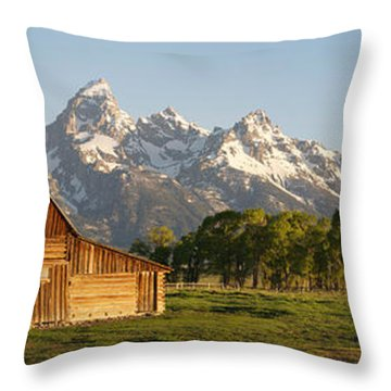 Teton Barn With Bison Throw Pillow