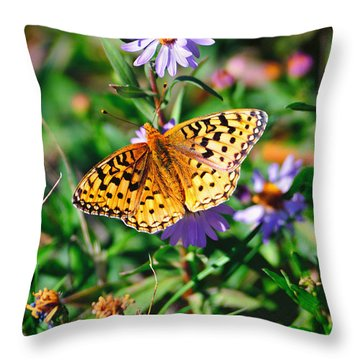 Teton Butterfly Throw Pillow