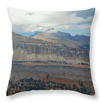 Teton Canyon Shelf Throw Pillow by Raymond Salani III