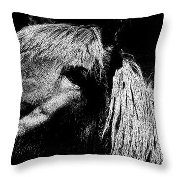 Teton Horse Throw Pillow