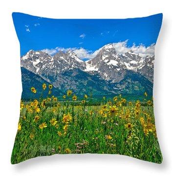 Teton Peaks And Flowers Throw Pillow