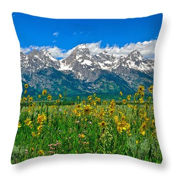 Teton Peaks And Flowers Throw Pillow by Greg Norrell