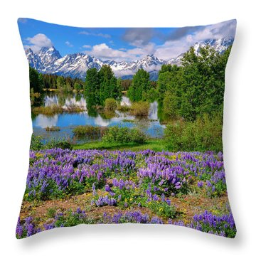 Teton Spring Lupines Throw Pillow by Greg Norrell