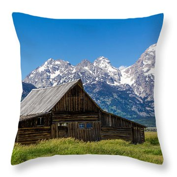Teton Summer Throw Pillow by Tassanee Angiolillo
