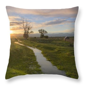 Teton Valley Morning Throw Pillow