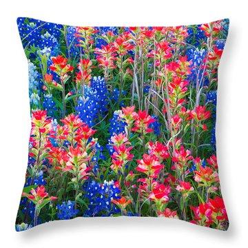 Texan Quilt Throw Pillow