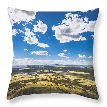 Texas Beauty Throw Pillow