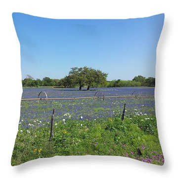 Texas Blue Bonnets Throw Pillow