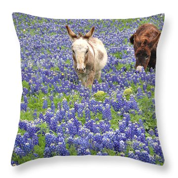 Throw Pillow featuring the photograph Texas Donkeys And Bluebonnets - Texas Wildflowers Landscape by Jon Holiday
