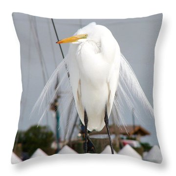 Throw Pillow featuring the photograph Texas Gulf Coast Great White Egret by Linda Cox