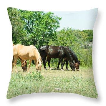 Texas Highway 1431 Horses Grazing Throw Pillow